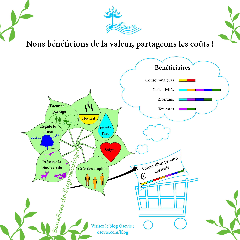 Agroécologie_Osevie.jpg
